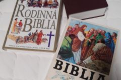 Biblia28